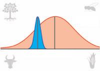 Towards an Integrative View of Adaptation: Bridging Population and Quantitative Genetics