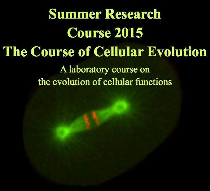 2015 Summer Course