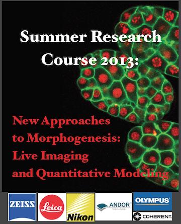 2013 Summer Course